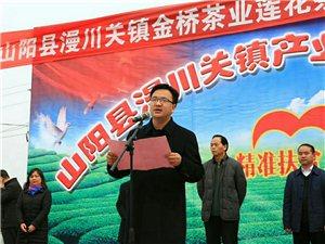 山阳县漫川关镇产业扶贫结硕果,分红增收笑开颜