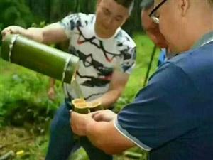 竹筒酒是怎么装进去的