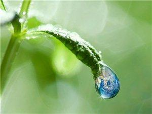 今天雨水节气