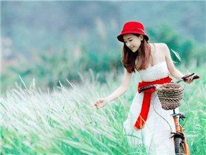 美女与单车