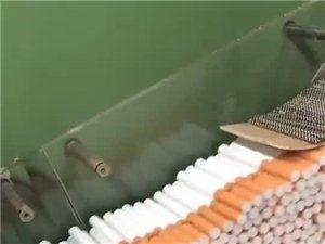 香烟是这样生产的