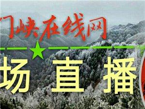 陕州区桃花谷盛开,苍鹭静息黄河古栈道上