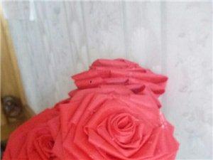刚做出来的布艺玫瑰花。漂亮吗