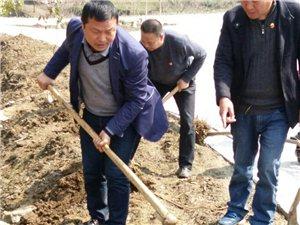 """土关垭镇驻村工作队与贫困户同栽""""连心树"""""""
