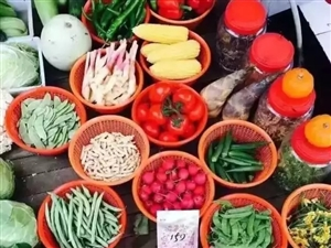 159素食全餐产品起源及市场【韩丹演讲】