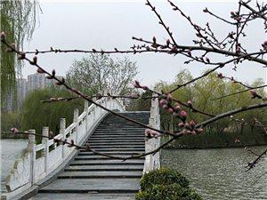 小桥流水,又见鸭绿两岸!