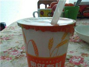 美高梅注册天润酸奶燕麦谷粒风味发酵乳果然有料