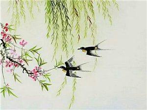 春风不解意,三月桃花寄。春分雨脚落声微,柳岸斜风燕归来,轻轻推动春的门扉,唤醒了人