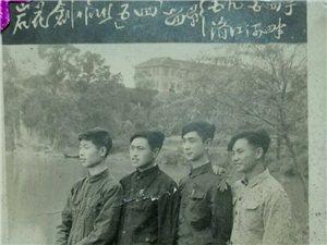 """1959年湄中""""岩花""""文学社"""