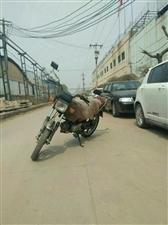 出售:本田摩托车