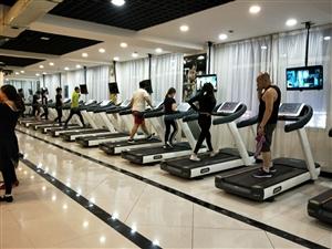 澳门太阳城网站县~动岚健身会所先推出优惠健身卡最低380元