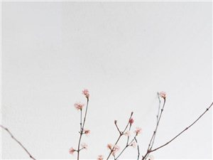 婚纱韩式风简描(个人爱好写文)