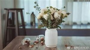 十言换位!第一言:当我们拿花送给别人的时候,首先闻到花香的是自己;当我们抓起泥巴抛向别人的时候,
