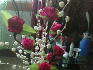 花儿好美丽