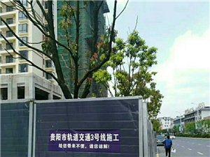 花溪区政府�D�D麒鑫建材家居博览城