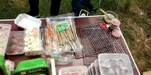 �@冷�嵋巳说奶�猓��е�孩子家人,一起�敉��烤野炊,多么�芤狻�