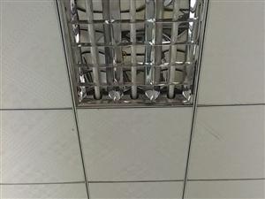 你是否赞成对教室灯光统一检测、统一标准?