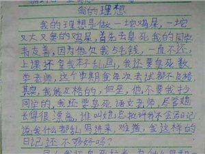 我有一个同学写了这样的日记要笑死人