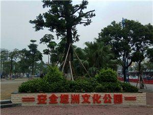 安全坦洲文化公园
