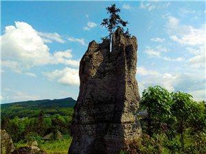 永寿小石林的一些风景