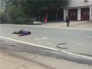 来自一名光山一高学生的泣血求助:我爸妈被人用车撞了跑了!我的爸爸惨死车轮下,妈妈重伤,浑身是血在武汉