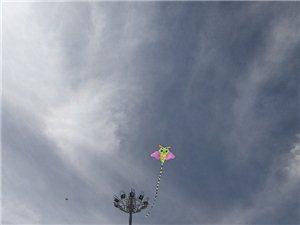 和平广场放风筝