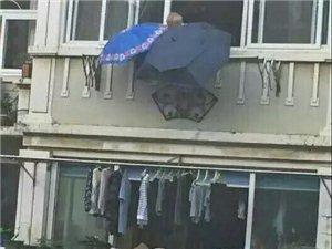 宁波突降大雨,一位大爷见楼下邻居晾晒的衣物未收,便从自家窗户撑起两把伞为衣服挡雨,直到楼下主人赶来收