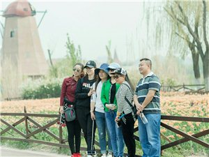 滨州-荷兰风情村