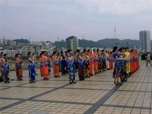 """「迈阿蜜」线下""""泸州市茉莉花艺术团""""成立!"""