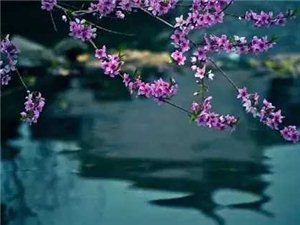"""""""喷泉之所以漂亮是因为她有了压力;瀑布之所以壮观是因为她没有了退路;水之所以能穿石是因为永远在坚持。"""