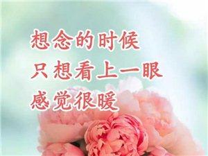 谁知道天泉明珠小区,物业电话开发商地址投诉