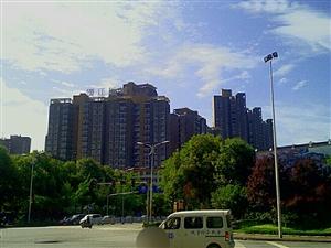 汉江新城(今日手机随拍)。
