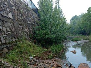 经济开发区新法院后面河流污染