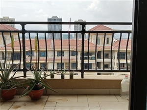 新城核心区政府旁碧桂园品质大盘精装小三房出售