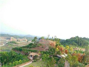 美丽的新农村