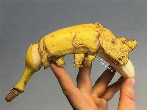 别人用纸作画他用香蕉,发挥最大创意能量的香蕉艺术