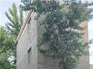 临泉县老集镇老集街道最牛的房子,人行道就在房屋的阳台上。