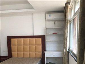 桥北精装单身公寓1室1厅1卫800元/月