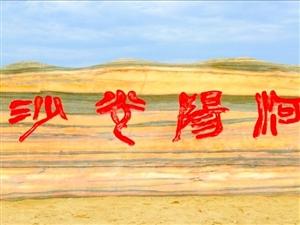 """荆门第三届沙雕艺术节暨""""大美漳河.飞翔圣地""""摄影大赛启动仪式(荆门在线拍摄/强锅)"""