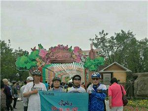 骑行武清区京滨玫瑰庄园,感受月季花之美