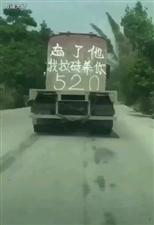 520最强表白