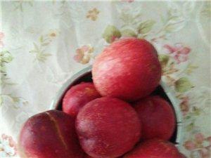 脆脆甜甜的桃子熟了