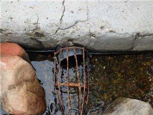 澳门新葡京赌场县五龙山瑶族乡政府扶贫的自来水