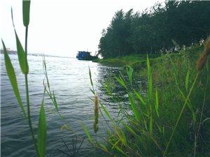 河边钓鱼随拍