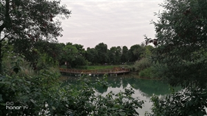 洛带湿地公园