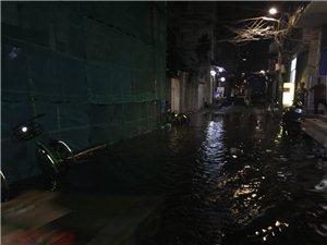 今天下了一场大雨,翠微村又变水塘了