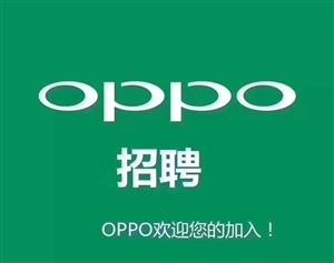 OPPO招导购