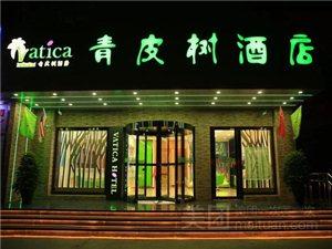 青皮树北京澳门拉斯维加斯网址东外大街老919车站酒店