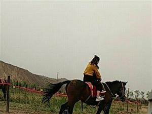 九龙口景区