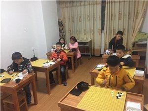 澳门牌九网址暑期孩子想学围棋的可以报名了,启蒙班,幼儿园中班以上可以试听,电话3300666